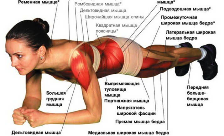 восстановление мышц после тренировки после 40 лет